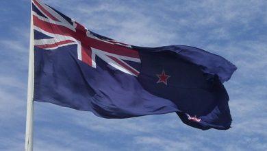 "Photo of New Zealand's Ministry of Health says ""Go Vegan"""
