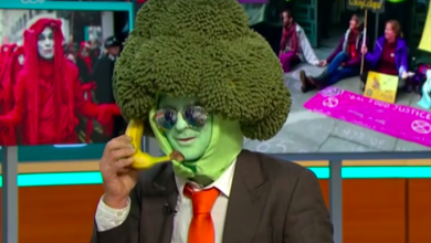 Photo of Opinions Divided on Mr Broccoli's Performance on Good Morning Britain