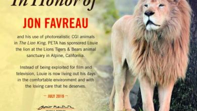 Photo of Animals don't need to be hurt making Films, says The Lion King Director