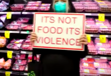 Photo of Vegan Activists stage another supermarket protest in New Zealand causing Inconvenience
