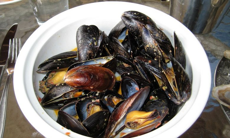 Mussels, sustainable seafood that is popular with Waitrose shoppers Photo: Tim Sackton from Somerville, MA (CC BY-SA 2.0)
