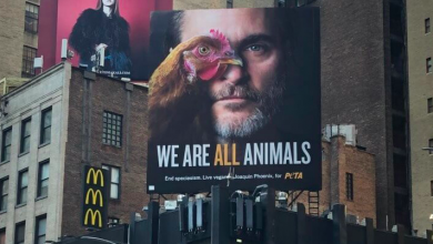 Photo of Joaquin Phoenix is named PETA's 2019 Person of the Year